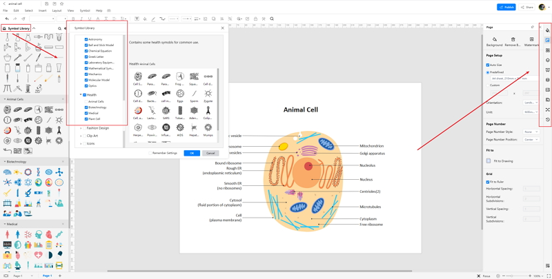 How to Create Animal Cell Diagram Online