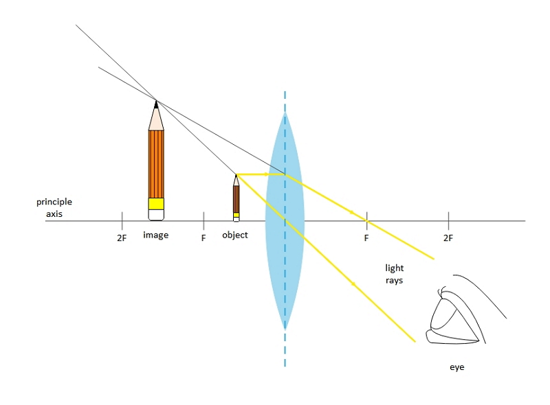 Convex Lens Ray Diagram