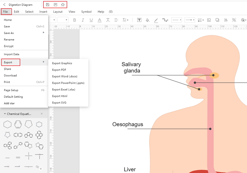 How to Create Digestion System Drawing Online