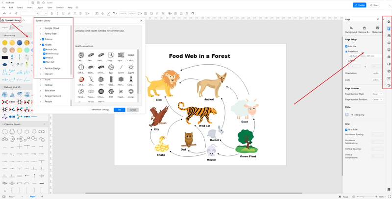 How to Create Food Web Diagram Online