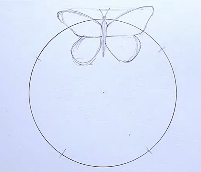 How to Create Life Cycle of Butterfly Diagram from Sketch