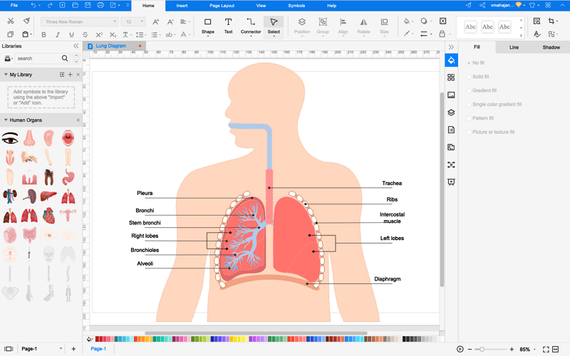 How to Draw Lung Diagram Online