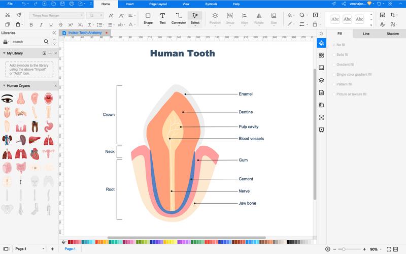 How to Create Teeth Diagram Online