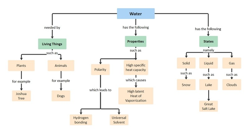 Biology Concept Map Example
