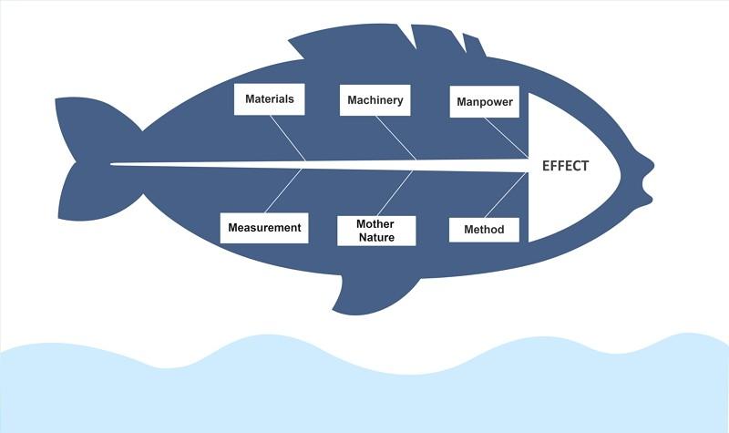 Exemple de diagramme en arête de poisson