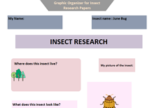 Graphic Organizer for Insect Research Papers