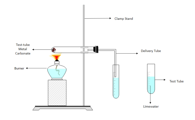 Effect of Temperature on Rate of Reaction