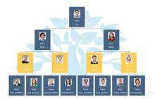 Dod Organizational Chart