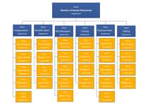 Corporate Organizational Chart