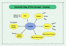 Semantic Map of the Concept