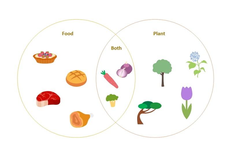 Diagramme de Venn amusant