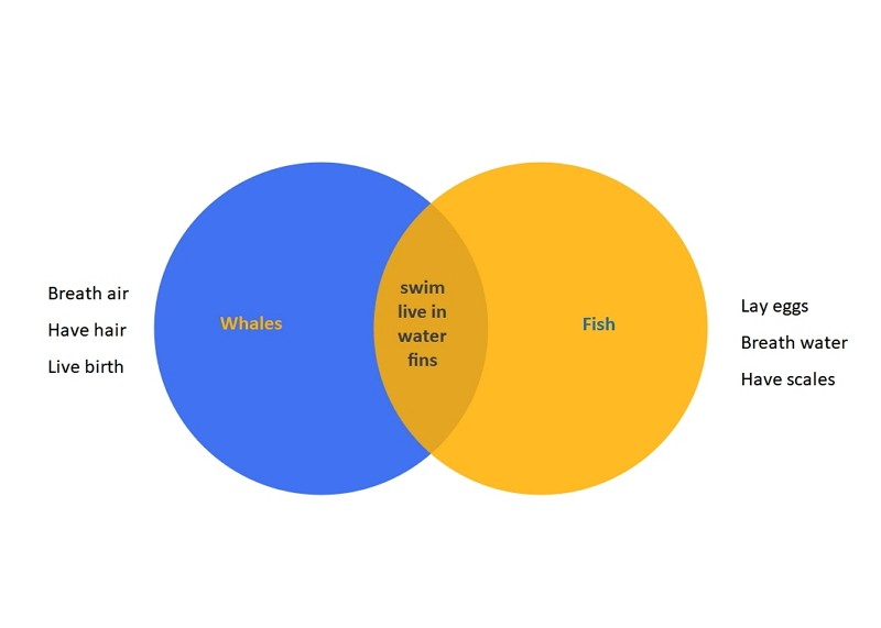 Diagramme de Venn pour enfants