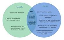 Exemples de diagrammes de Venn