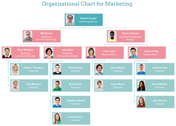 org chart for marketing
