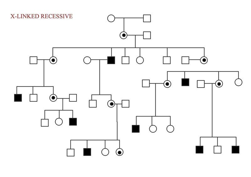 X-linked recessive disorder