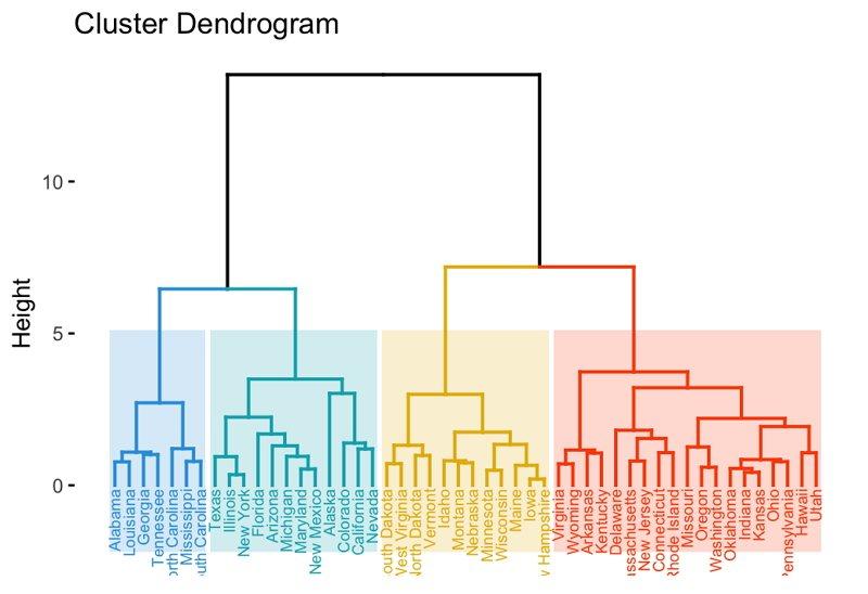 Dendrogram Image