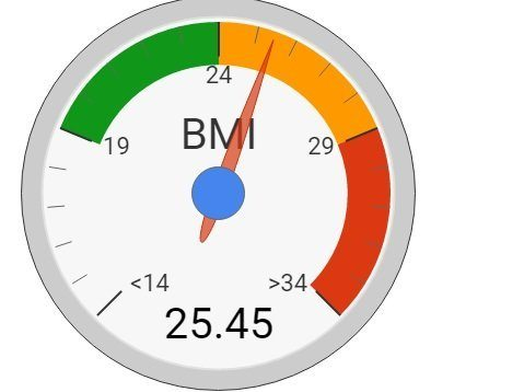 simple BMI
