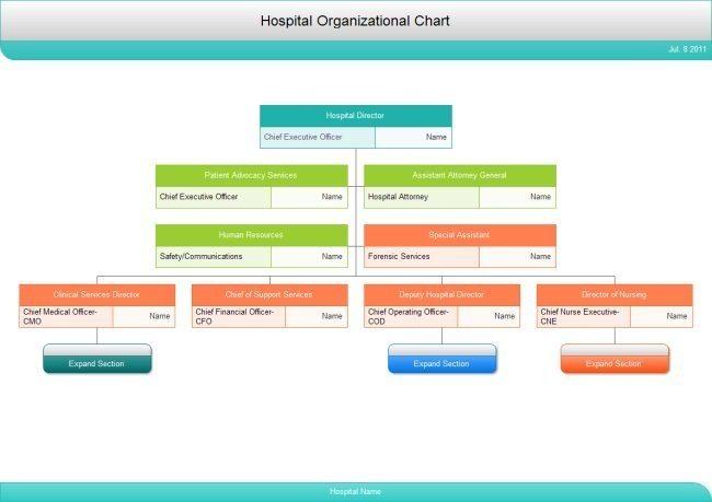 Hospital Org Chart