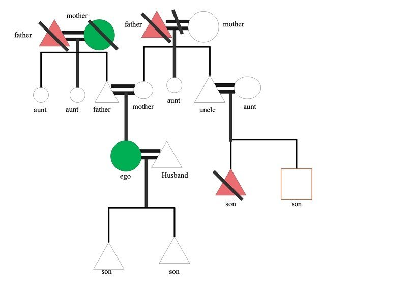 kinship chart example01