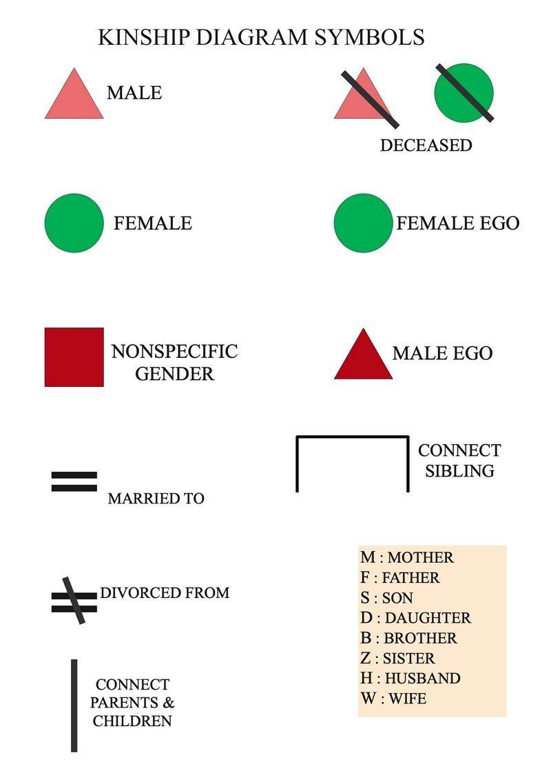 kinship chart symbols