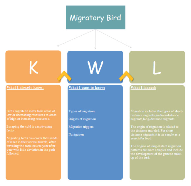 Migratory Bird Graphic