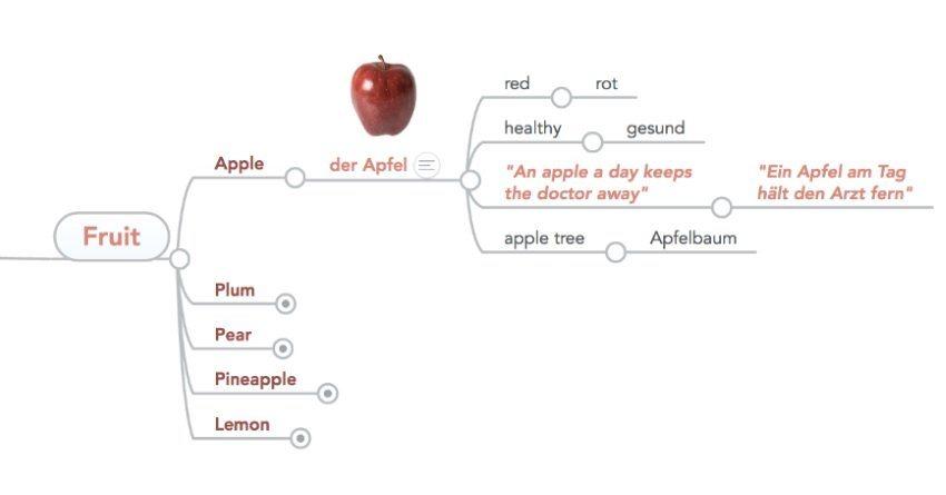 mind map learn language