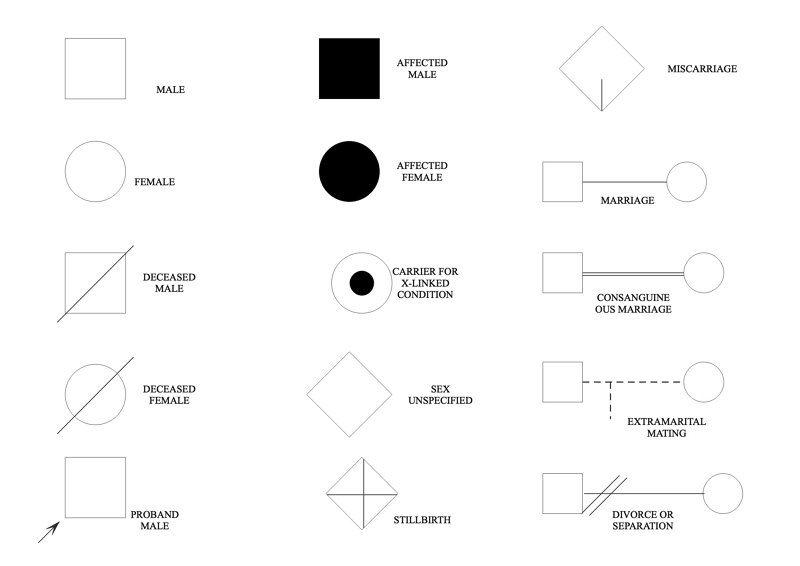 pedigree chart symbols