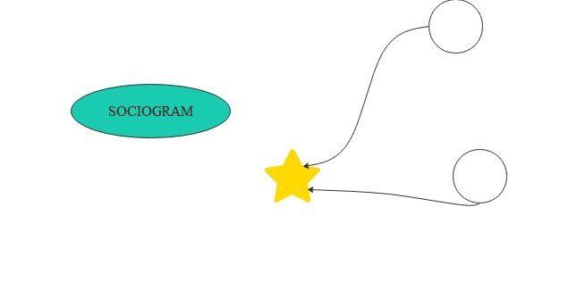 sociogram step3