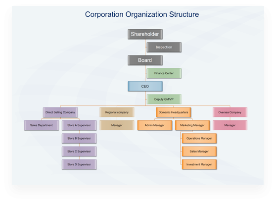 Corporation Org Structure